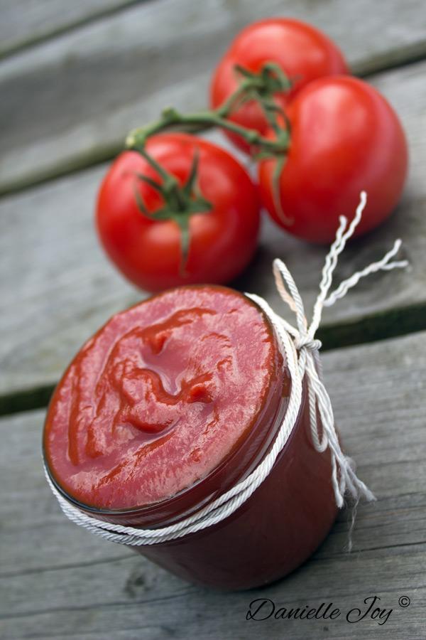 Sugar-free Tomato Ketchup | Danielle Joy